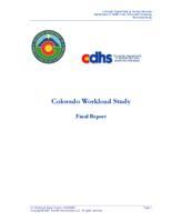 Colorado workload study : final report