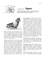 Controlling pigeons