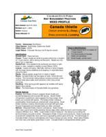 Canada thistle : cirsium arvense (L.) Scop.; Breea arvensis (L.) Lessing, BMPs