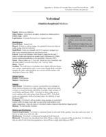 nr4202w41200009internet.pdf