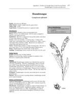 nr4202w41200007internet.pdf