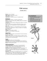 nr4202w41200006internet.pdf