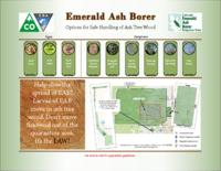 Emerald ash borer : options for safe handling of ash tree wood