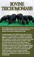 Bovine trichomoniasis
