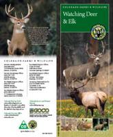 Watching deer & elk