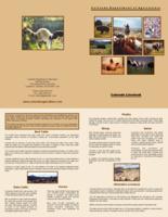 Colorado livestock