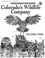 The little owls