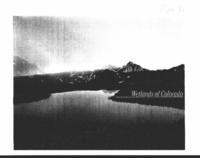 Wetlands of Colorado