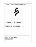 Flexplace pilot : working smarter